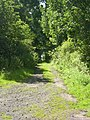 Track - geograph.org.uk - 498913.jpg