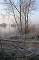 Traditional fencing, covered in frost - geograph.org.uk - 695525.jpg