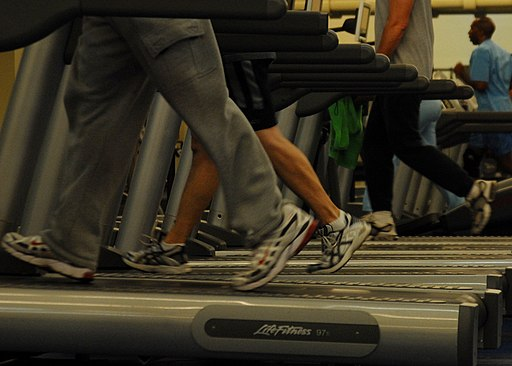 Treadmills at gym