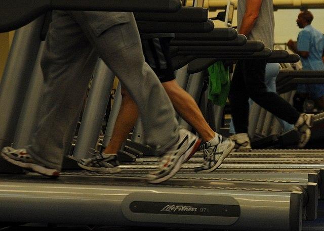 640px-Treadmills_at_gym.jpg