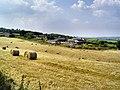 Trenchard Farm - geograph.org.uk - 26098.jpg