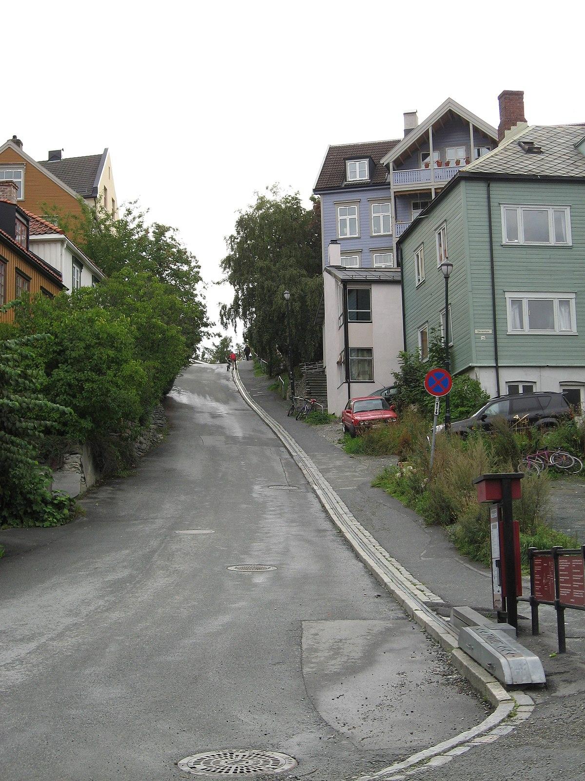 TrondheimTrampeHill.jpg