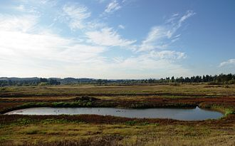 Tualatin River National Wildlife Refuge - Area in early fall