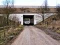 Tunnel under M66 - geograph.org.uk - 1752052.jpg