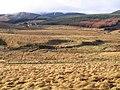 Tweeddale in winter - geograph.org.uk - 655849.jpg