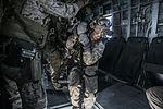 U.S. Marines fast rope from CH-53E Super Stallion at Sea 150617-M-SV584-195.jpg