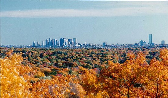 Boston's skyline in the background, with fall foliage in the foreground USA Massachusetts Boston Foliage.jpg