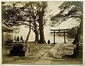 Ueno view.jpg