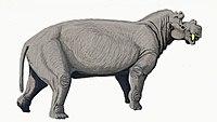 Uintatherium DB.jpg