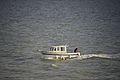 Un bateau de pêche de loisir RHEA 730 Fishing (1).JPG