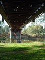 Underside of the old Murrumbidgee River Railway Bridge.jpg