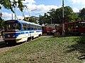Výstaviště Holešovice, historické tramvaje 2015, tramvaje u vjezdu a výjezdu.jpg