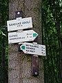 V Šáreckém údolí, směrovky zelené značky.jpg