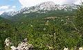 Vaganski vrh.jpg