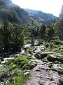 Vall d'Eina (juliol 2013) - panoramio (2).jpg