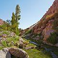 Valle de Jere-CTJ-IMG 5718.jpg