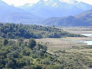 Yendegaia National Park -  Yendegaia Valley