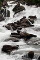 Vattenfall i Nordnorge, Johannes Jansson (5).jpg