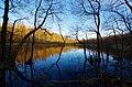 Vaxsjön Frostavallen Naturreservat, Höör, Skåne, Wiki Loves Earth Sweden 2001490.jpg
