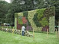 Vertical Garden from Lalbagh flower show Aug 2013 8797.JPG