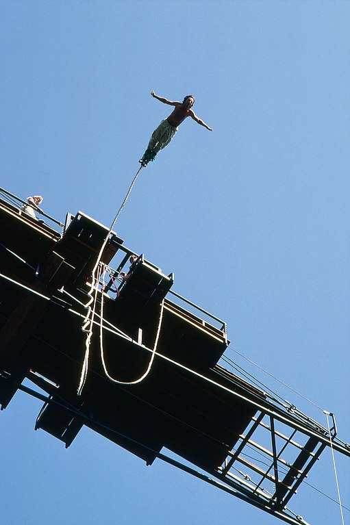 do: a bungee jump