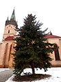 Vianočný strom Prešov 19 Slovakia.jpg