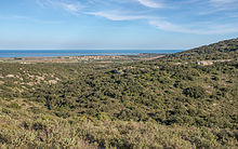 Vic-la-Gardiole, Hérault from Northwest 02.jpg