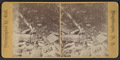 View at Lake Mohunk (i.e. Mohonk), Ulster County, N.Y, by Vail Bros..png