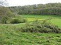 View to Rudge Wood - geograph.org.uk - 1274328.jpg