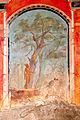 Villa Oplontis Calidarium 03.jpg