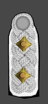 WSS Inf OF5 Oberf Staf 1945.png