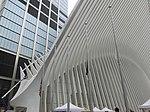 WTC Hub Sep 2018 11.jpg