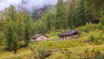 Wandeltocht rond Lago di Pian Palù (1800 m). in het Nationaal park Stelvio (Italië) 34.jpg