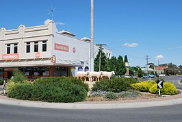 Warracknabeal Sheep Structure.JPG