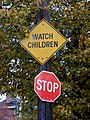 Watch Children (241269295).jpg