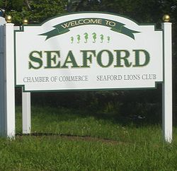 Skyline of Seaford, New York