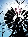 Windmill - panoramio - jpaxton.jpg