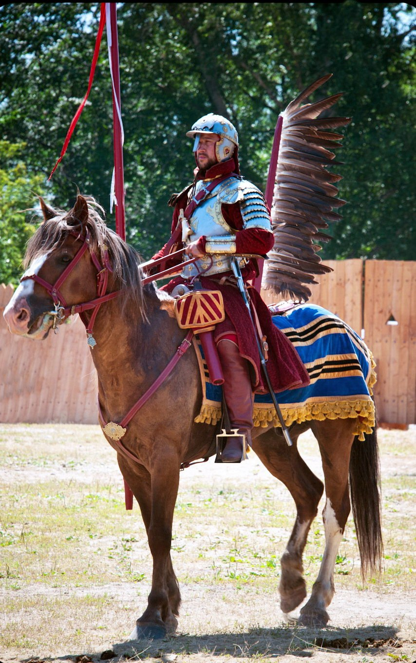Winged hussar, historical reconstruction