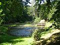 Wirty Arboretum 5.jpg