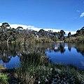 Wittunga Botanic Garden.jpg
