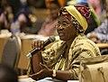 Women's Leadership Forum held in N'Djamena, Chad 170307-A-KH850-005.jpg