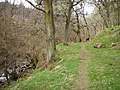 Wooded bank of the River Enrick - geograph.org.uk - 393241.jpg