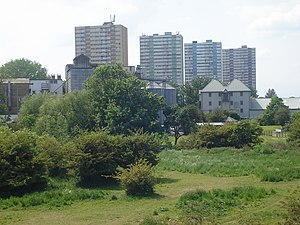Wright's Flour Mill -  The mill and the water-meadows viewed from the A121 road bridge