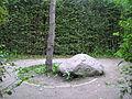 Wrocław, Park Brochowski 2009-09-06 - 139 labirynt grabowy.jpg