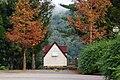 Wuling Farm Camping Area 武陵農場露營區 - panoramio.jpg