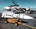 YAIM-54A Phoenix missile with F-14A Tomcat in 1973.jpg