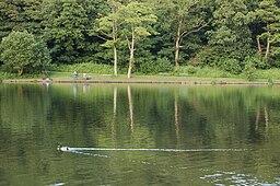 Yarrow Valley Park