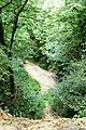 Zuid Limburg Uitzicht Geulhem - panoramio.jpg