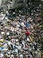 Çöplük.jpg