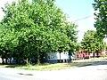 Čestereg, market place.jpg